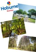 Summer 2021 - A summer break within the New Forest. Your accomodation will be at hoburne Bashley the