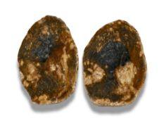 Minerals/Interior Design: A pair of rare agatised fossil wood slicesLyme Regis, Jurassic19cm