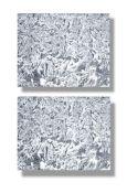 Minerals/Interior Design: Two pinolite slabsStyria, Austria43cm by 34cm