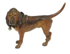 A cold-painted bronze bloodhound,