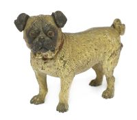 A cold-painted bronze pug,