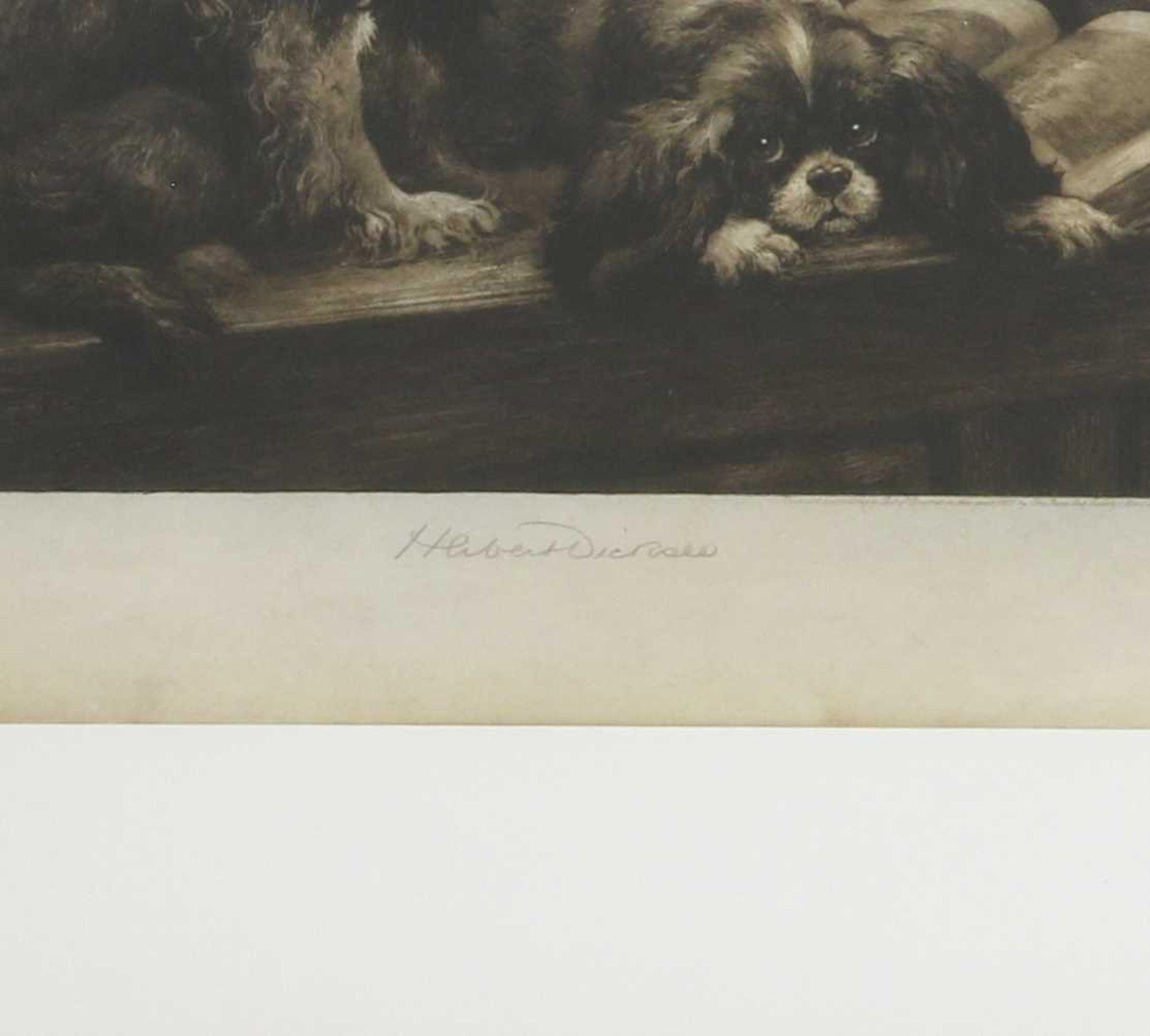Herbert Thomas Dicksee RE (1862-1942) - Image 3 of 4