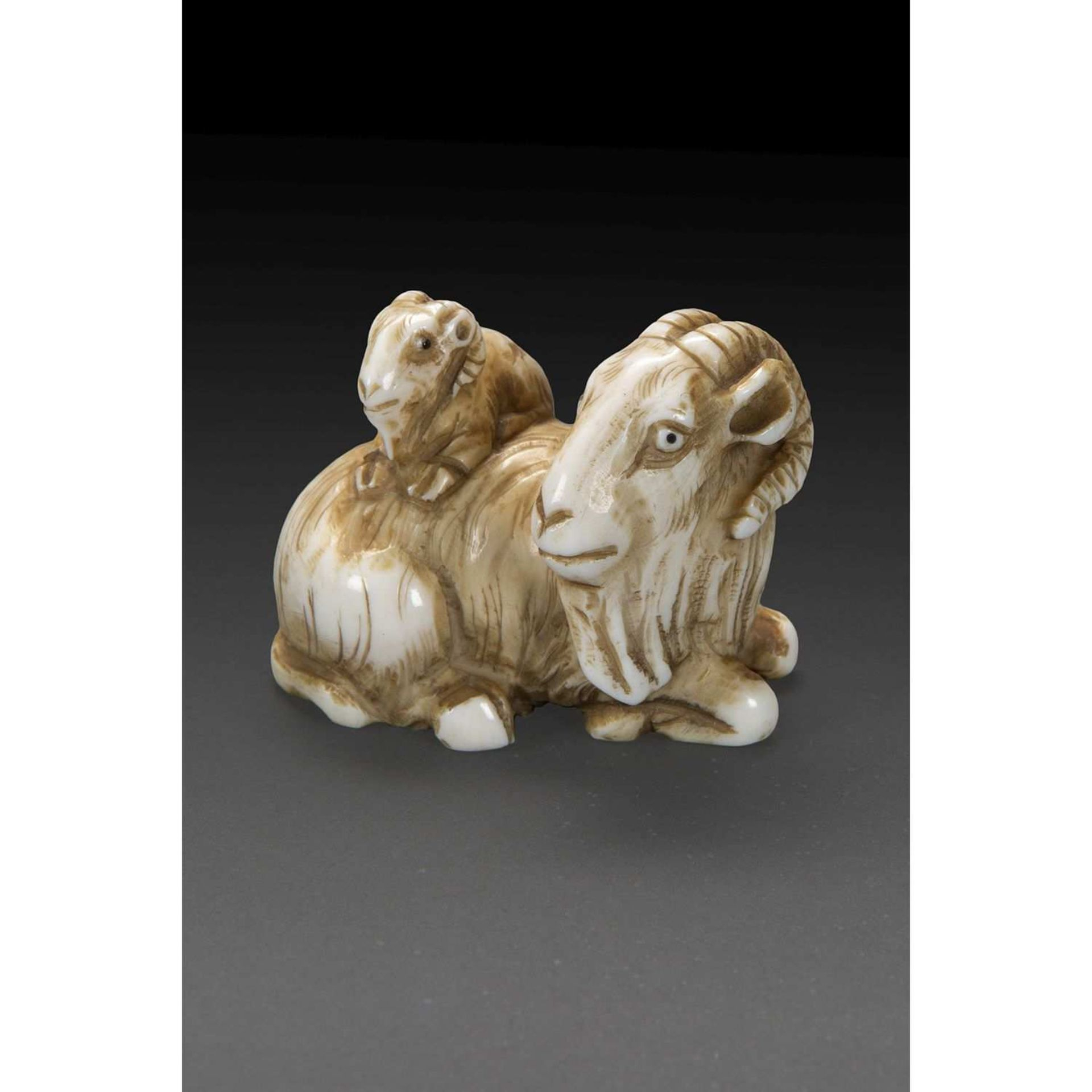 ~ NETSUKE en ivoire sculpté et patiné figurant un bouquetin couché accompagné de son petit. Signé