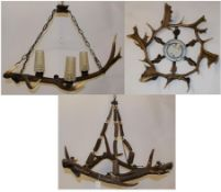 Antler Furniture: Red Deer & Fallow Antler Mounted Chandeliers, circa late 20th century, a Red