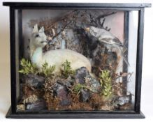 Taxidermy: A Cased Fallow Deer Fawn and Great Grey Shrike, circa 1900, a full mount deer fawn in