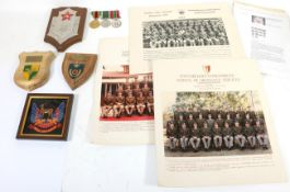 A British South African Police and Prison Service Group of Three Medals,