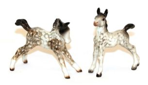 Beswick Foal (small, stretched, facing right), model No. 815 and Foal (small, stretched, upright),