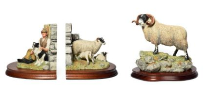 Border Fine Arts 'Blackie Tup' model No. B0354 by Ray Ayres, limited edition 353/1750, on wood