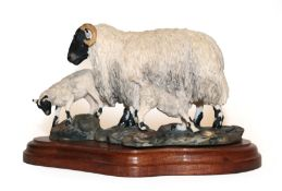 Border Fine Arts 'Blackfaced Ewe and Lambs' (Style One), model No. L25 by Mairi Laing Hunt,