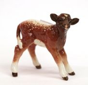 Beswick Dairy Shorthorn Calf, model No. 1406C, brown and white gloss with shading