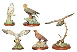 Border Fine Arts Birds of Prey Groups Including: 'Golden Eagle' (Style One), model No. RB40 by Ray