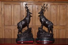 Pair of large impressive bronze stags on rocky outcrops, raised on marble plinths, 75cm high.
