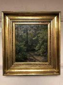 Continental School : Woodland, oil on panel, framed.