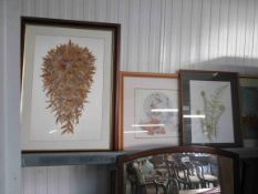 Four large modern pictures including Fern's unfolding by Susan Arnold