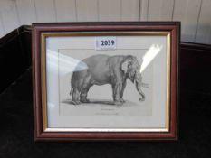 A pair of Georgian Elephant prints both framed and glazed