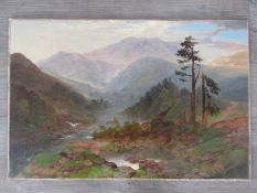 A late 19th Century oil on canvas, mountainous valley scene.