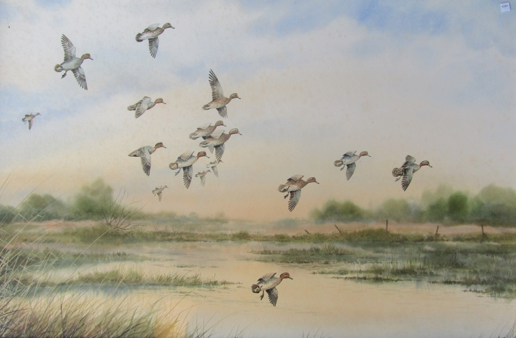 SIMON TRINDER (b.1958) A gilt framed watercolour, Teal coming in to land on water.