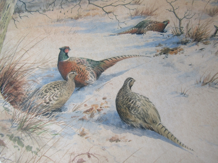 SIMON TRINDER (b.1958) A gilt framed watercolour, Pheasants in snow watching a fox. - Image 4 of 6