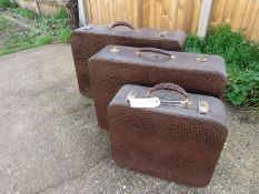 A set of three graduating Pukka Luggage snakeskin suitcases