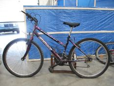 An Ammaco Tropical oversized gripspee bicyle