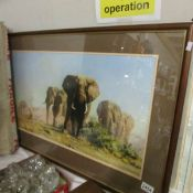 A framed and glazed David Shepherd print entitled 'The Ivory is Theirs', image 72 x 37 cm.