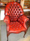 A deep buttoned Queen Anne leg arm chair in deep tan.
