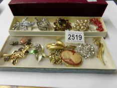 10 assorted brooches, a pendant and a pair of earrings.