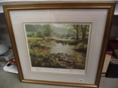A framed and glazed Limited Edition print 'Memories of Summer' signed by David Dipnall