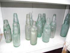 A collection of approximately 13 old COD bottles