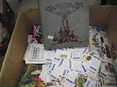 A large lot of loose tea cards.