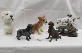 5 dog figures including Leonardo.