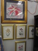 A signed watercolour of a flower and 4 framed and glazed floral prints.