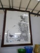 An oak framed and glazed pen and ink drawing of animals, birds, insect and mammals by Jane Link,
