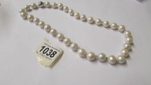 A substantial freshwater pearl necklace with silver ball clasp.