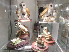 6 Leonardo owl figures.