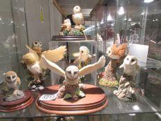 8 assorted owl figures.