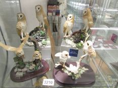 4 Leonardo owl groups.