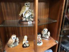 5 owl figures