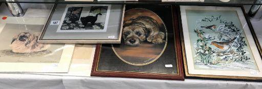 A framed & glazed print of a dog, 2 unframed dog prints,