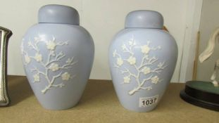 A pair of pale blue Copeland ginger jars.