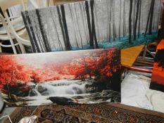 2 large prints, 120 x 50 cm.