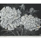 Henry Eric Bergman (1893–1958), PEONIES, 1929, Black and white wood engraving on fine laid Japon ric