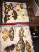 A tin of butterflies Please note, lots 1-1000 are not available for live bidding on the-saleroom.