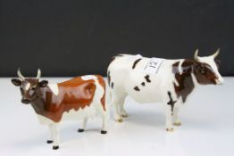 Beswick Ayrshire Bull ' Ch. Whitehill Mandate ' model no. 1454B together with a Beswick Ayrshire Cow