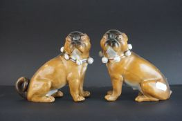 Pair of 19th century Meissen Style Porcelain Seated Pugs with bell collars, 13cms high (one with