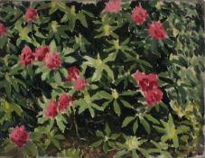 """Cecil RILEY (British 1917-2015) Rhododendron, Oil on canvas, 9"""" x 12"""" (22cm x 30cm),Provenance: W."""