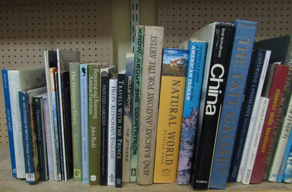 Lot 815 - A quantity of mixed books subjects include painting, art, natural history. travel, etc (approx 42