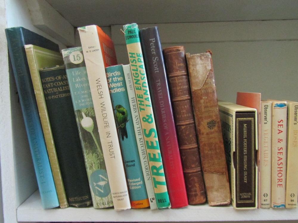 Lot 786 - A quantity of natural history books including Life in Lakes and Rivers, part of The New Naturalist