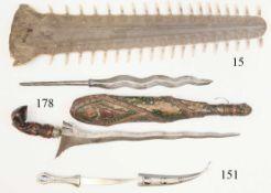 Schwert eines Sägezahnrochens<