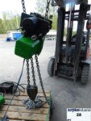 RWM Electric Chain Hoist